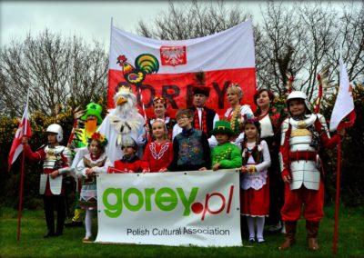 Polacy w Paradzie Św. Patryka, Gorey 2017