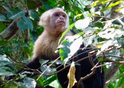 Manuel Antonio, Kostaryka